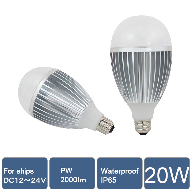 LED Bulbs case